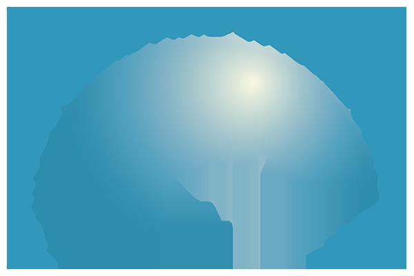 Altitude Oral and Facial Surgery